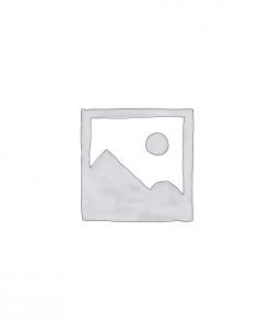 Dash Cam Car DVD Recorder